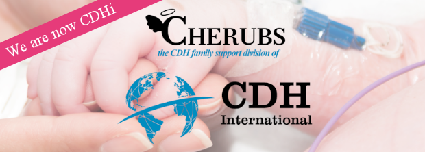 CHERUBS is now Congenital DIaphragmatic Hernia International