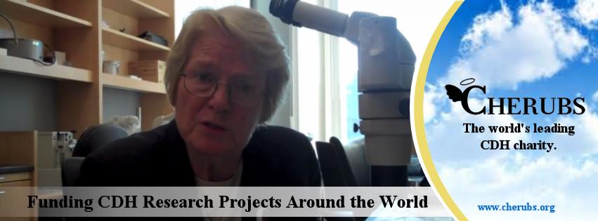 CDH Research Grants