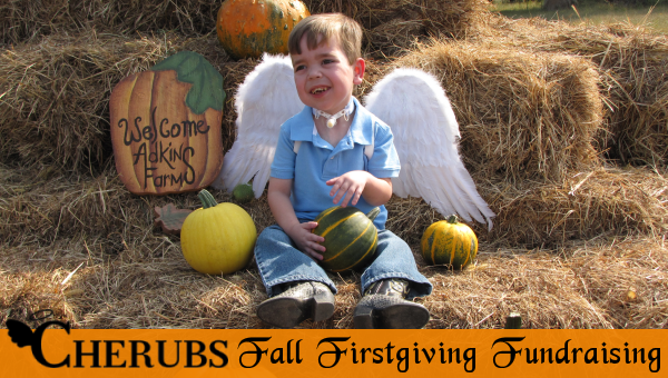 Fall Firstgiving Fundraisers
